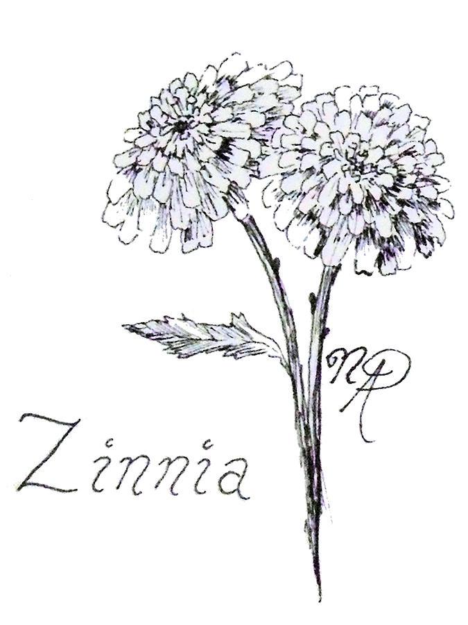 Zinnia Drawing - Zannie Zinnia by Nicole Angell
