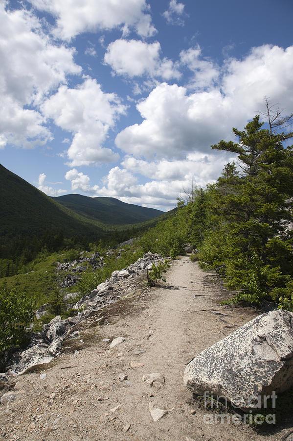 White Mountains Photograph - Zealand Notch - White Mountains New Hampshire Usa by Erin Paul Donovan