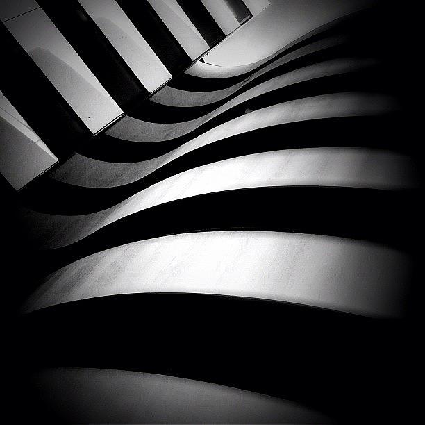 Blackandwhite Photograph - Zebra City - Concrete Jungle by Robbert Ter Weijden