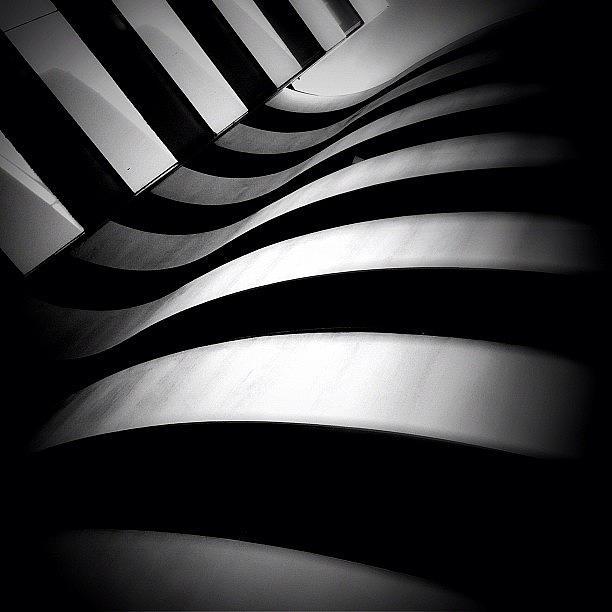 Blackandwhite Photograph - Zebra City - Concrete Jungle by Robbert Ter Weijden