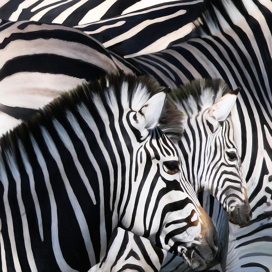 Zebras Painting - Zebra Family by Johnnie Boswell