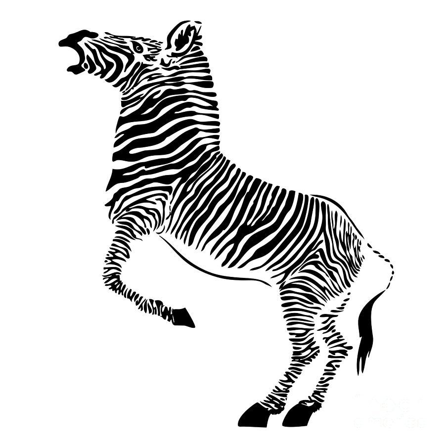 Zebra Drawing By Michal Boubin