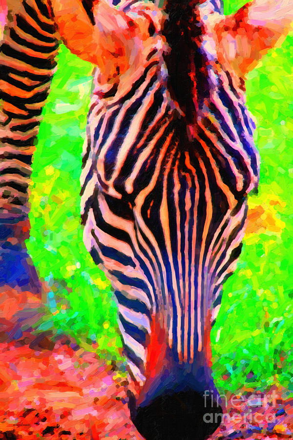 Zebra Photograph - Zebra . Photoart by Wingsdomain Art and Photography