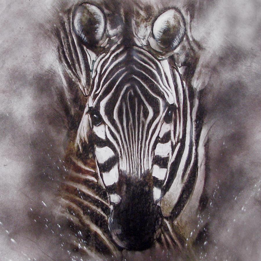 Zebra splash by Jackie Flaten