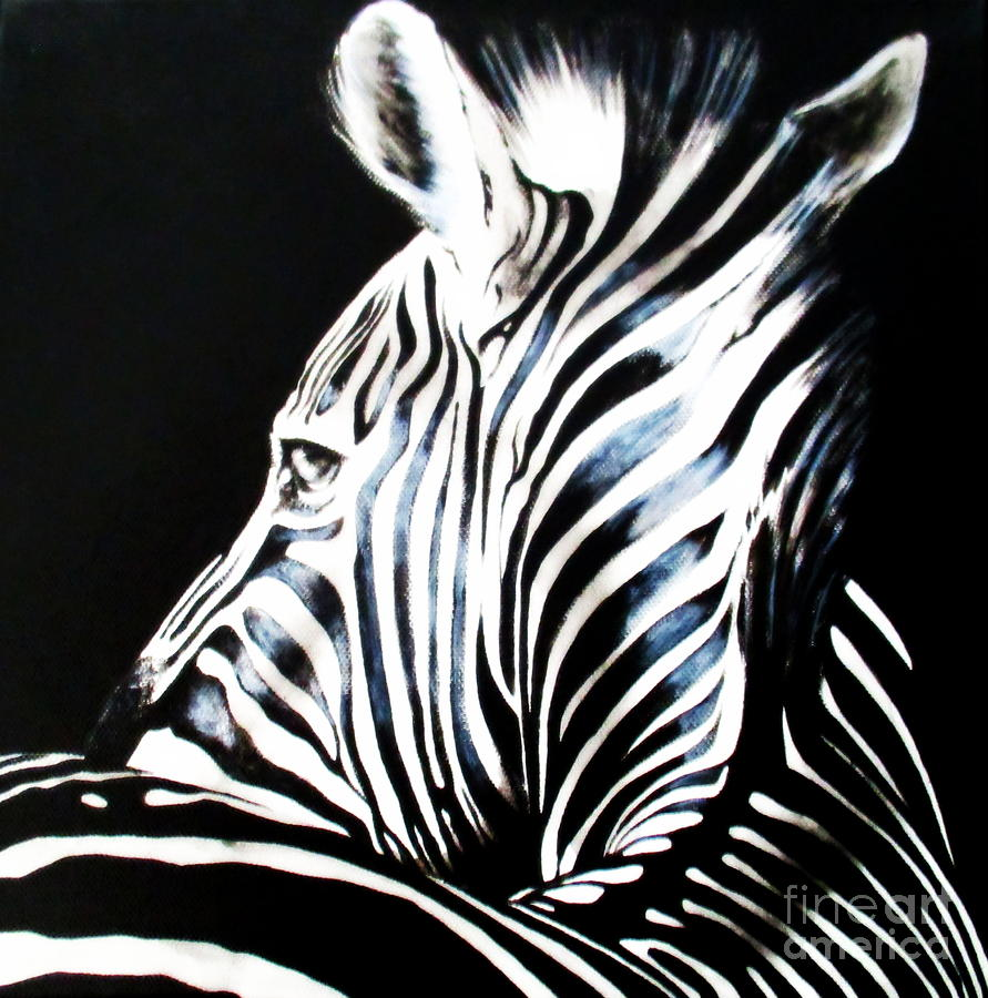 Zebra by Tracey Armstrong