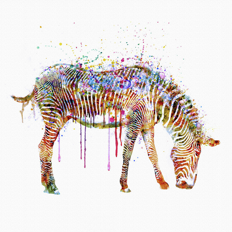 Zebra Watercolor Painting Mixed Media By Marian Voicu