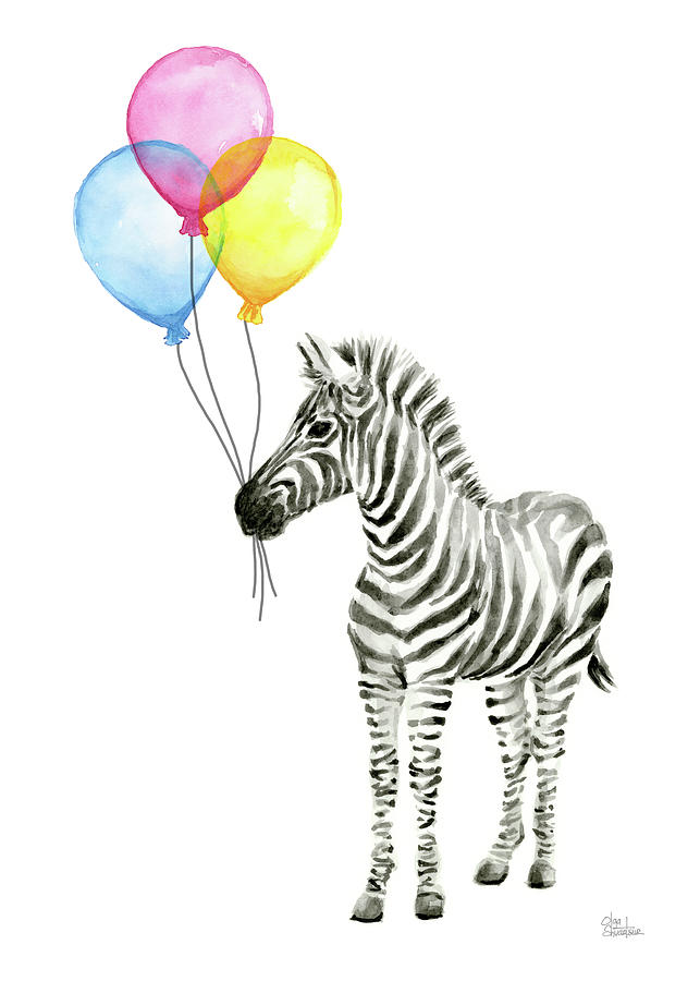 Zebra Watercolor With Balloons Painting By Olga Shvartsur