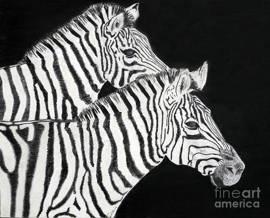 Zebras by Carol Morris