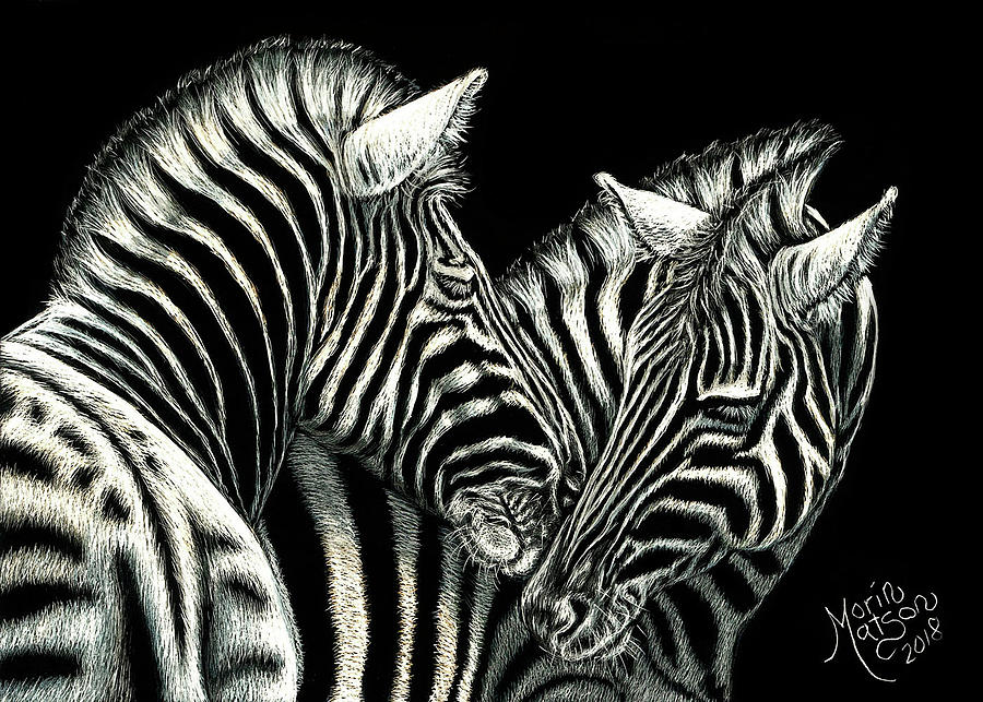 Zebras by Monique Morin Matson
