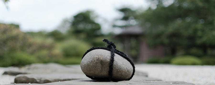 Zen Photograph - Zen Garden by Mark Marshall