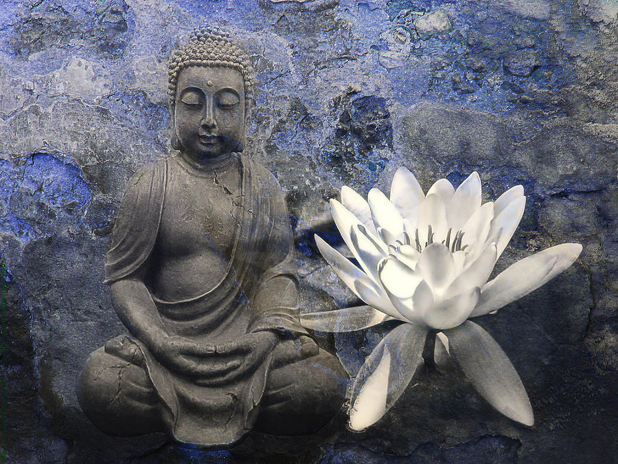 Zen Photograph - ZEN by Joachim G Pinkawa