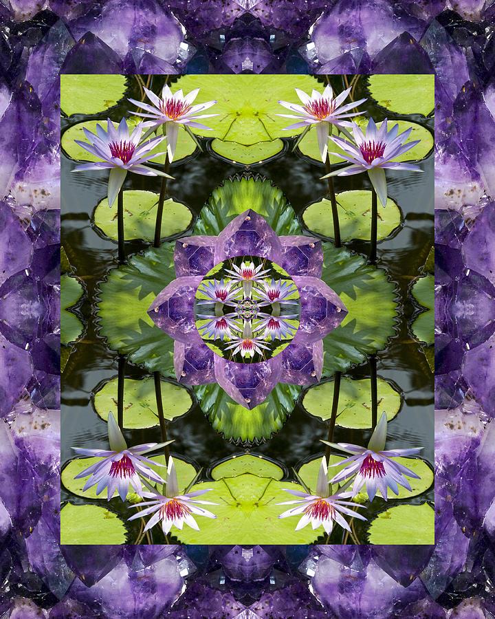 Mandalas Photograph - Zen Lilies by Bell And Todd