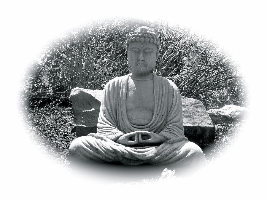 Zen by Michael Lucarelli