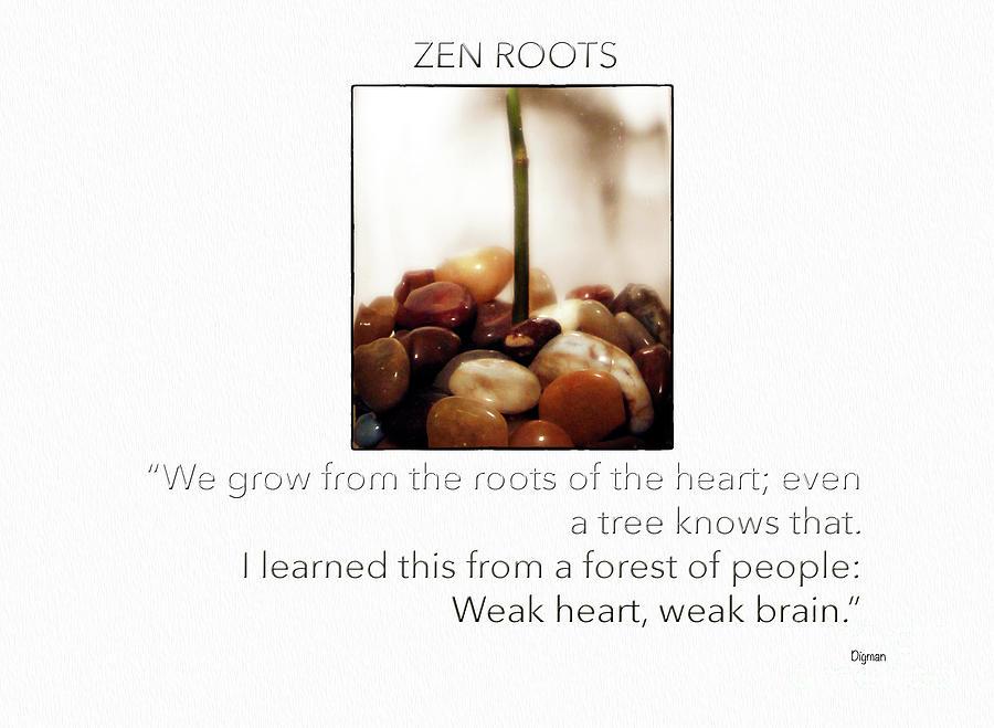Zen Photograph - Zen Roots  by Steven Digman