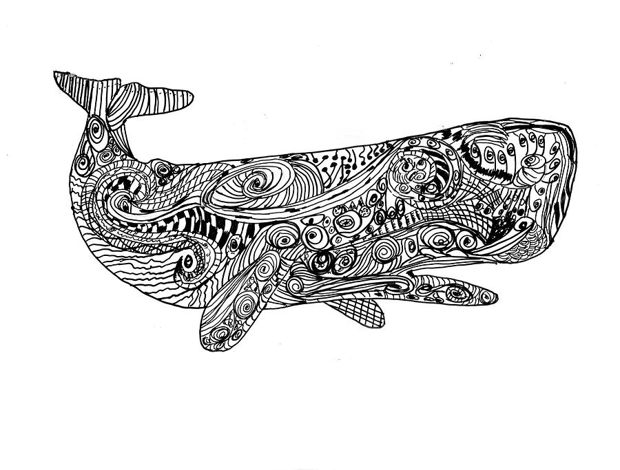 Pen Drawing - Whale by Day Williams