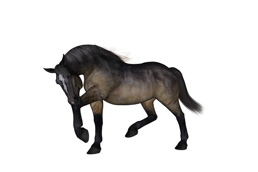 Horse Digital Art - Zephyr by Betsy Knapp