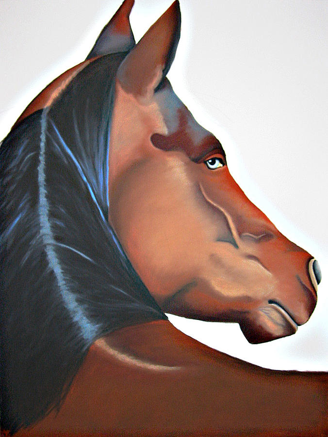 Horse Painting - Zeus by Brenda Wolf