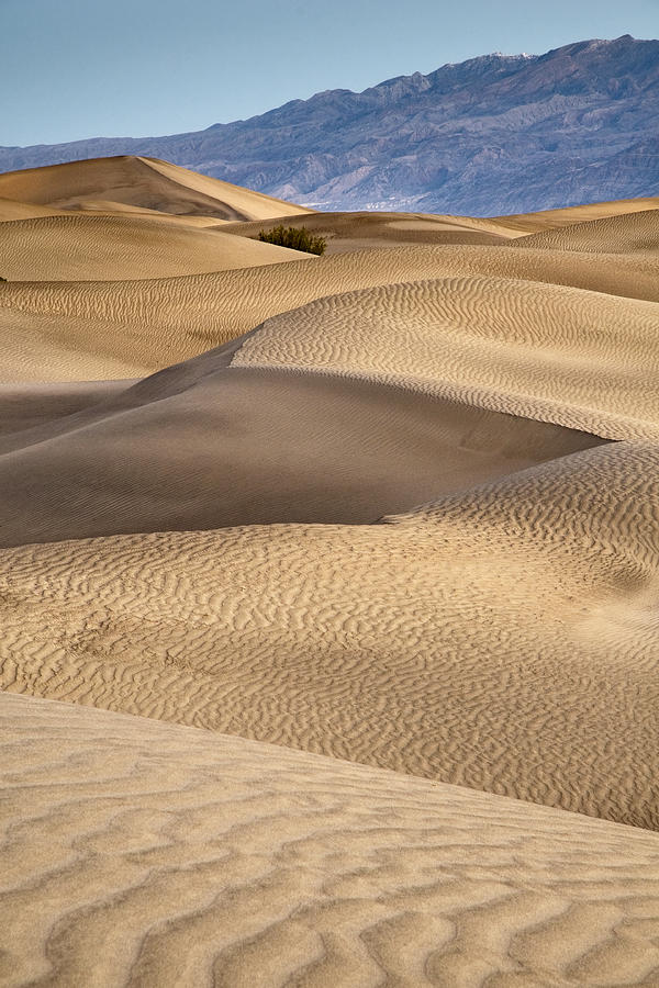 Sand Dunes Photograph - Zig Zag by Mike McMurray