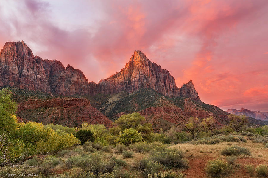Zion Awakens by Expressive Landscapes Nature Photography