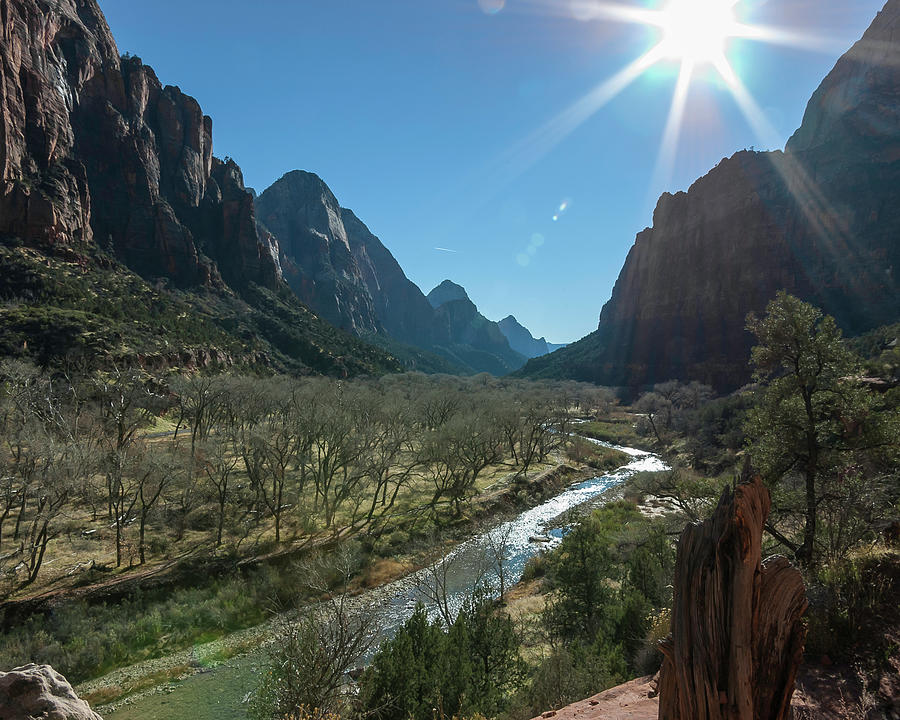 Zion Canyon Photograph - Zion Canyon by Mike Herdering