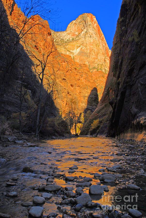 Utah Photograph - Zion by Dennis Hammer