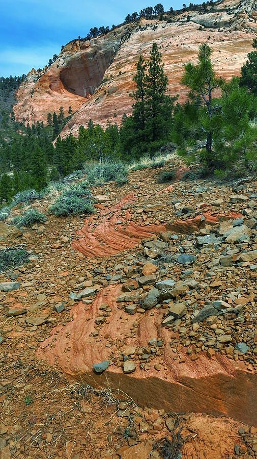 Zion Cliffs Photograph by Scott Waters