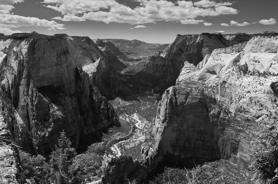 Zion National Park Photograph - Zion Valley From Observation Point by Steven Wilson