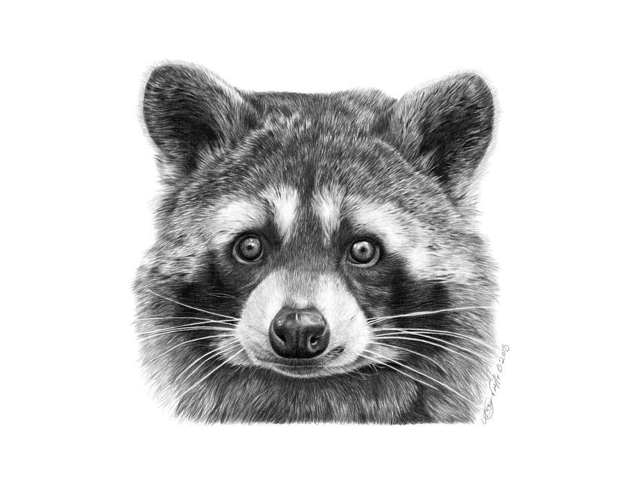 046 Zorro the Raccoon by Abbey Noelle