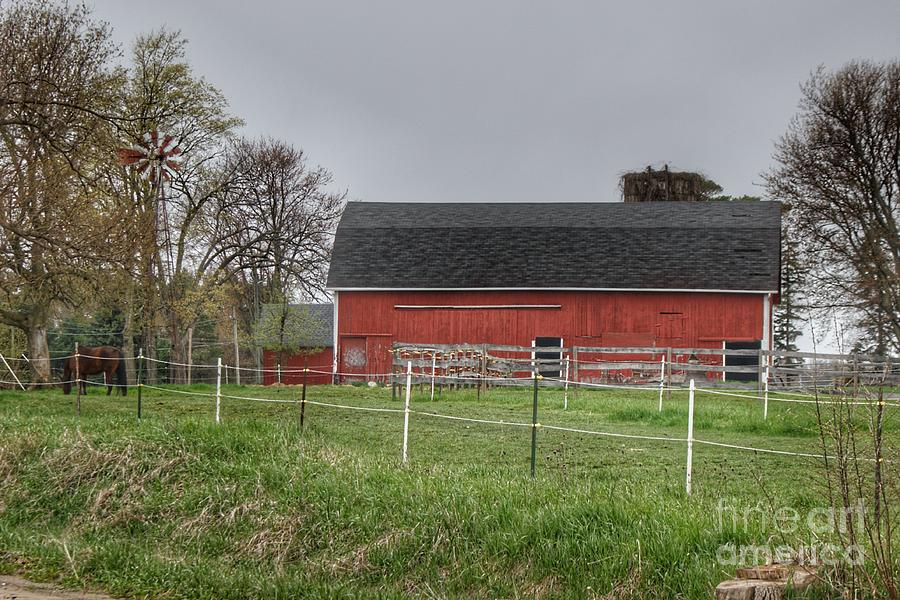 0299 - West Lake Road Filly and Farm by Sheryl L Sutter