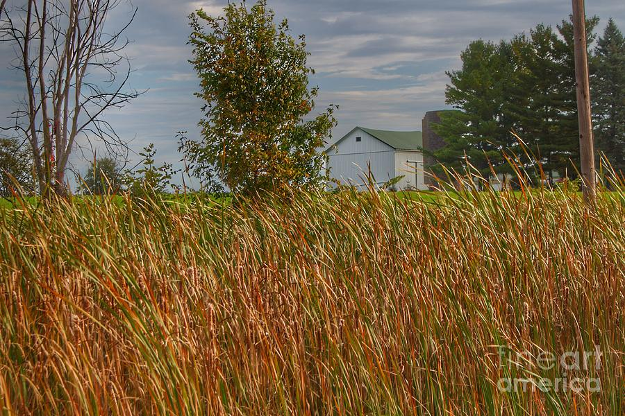 0693 - LeValley White and Silo by Sheryl L Sutter