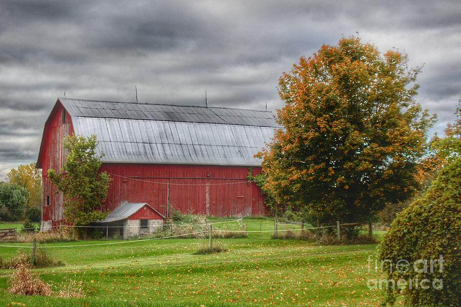 0704 - Columbiaville Red in Fall II  by Sheryl L Sutter