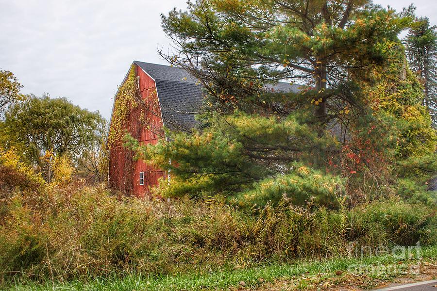 0707 - Green Corners Road's Hidden Red by Sheryl L Sutter