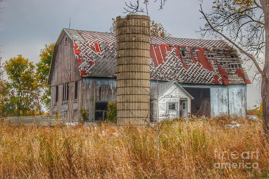 0709 - Hill Road's Roadside Grey I  by Sheryl L Sutter