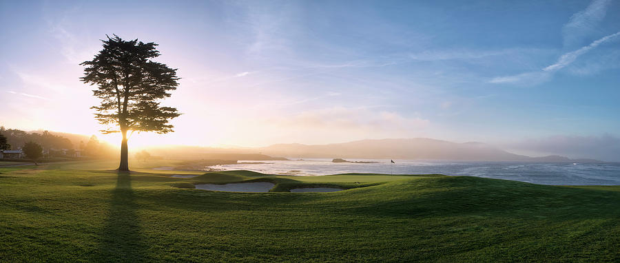 Horizontal Photograph - 18th Hole With Iconic Cypress Tree by Panoramic Images