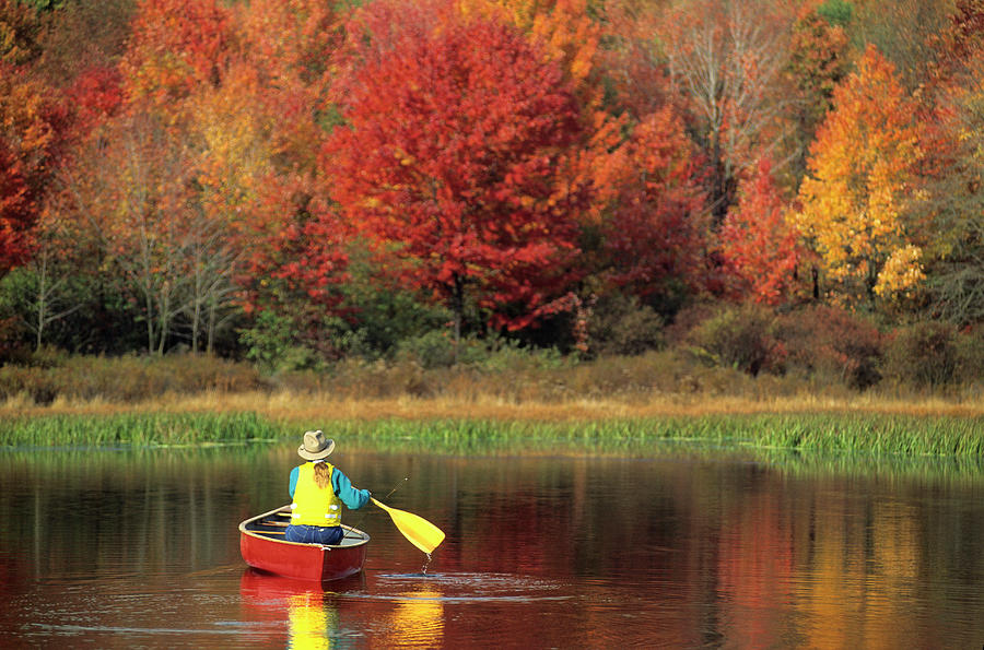 A Person Canoeing In Pennsylvania Photograph by Beck Photography