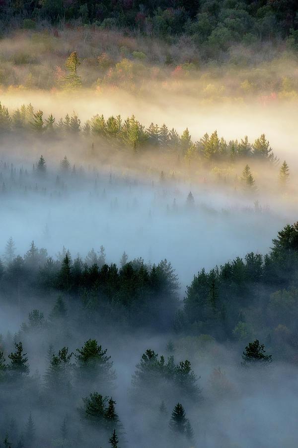 Adirondack Fog by Brad Wenskoski