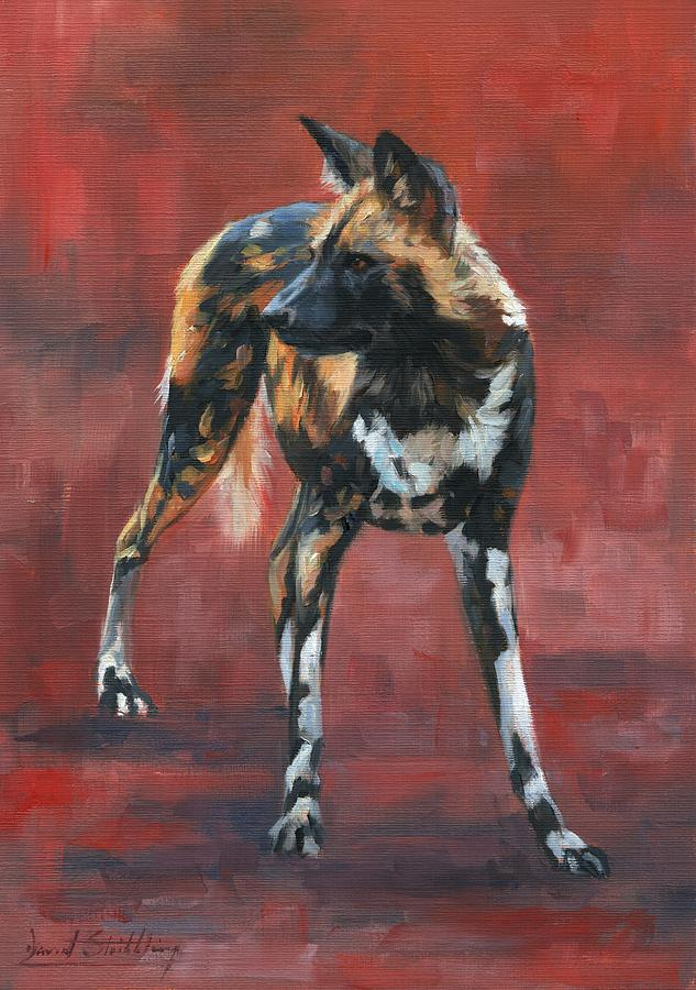 African Wild Dog by David Stribbling