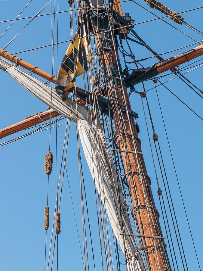 Ahoy Mate by Stewart Helberg