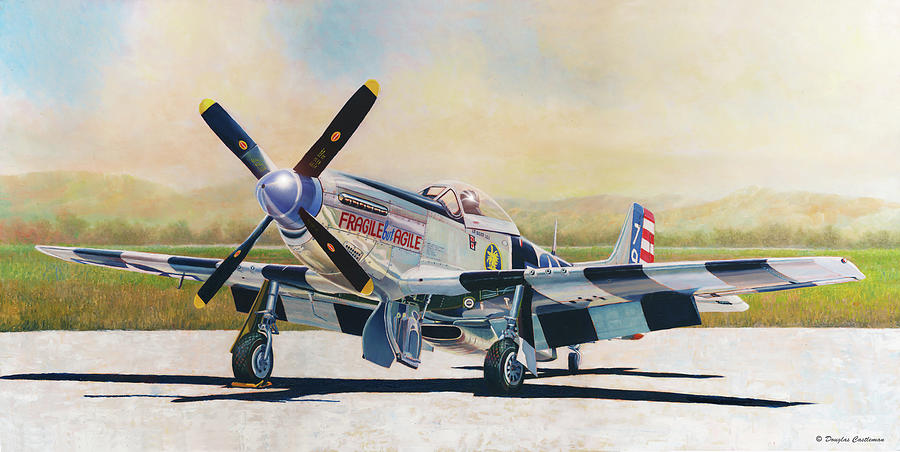 Airshow Mustang by Douglas Castleman