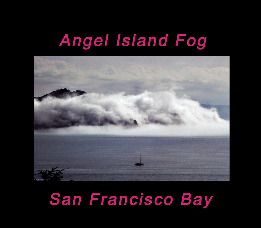 Angel Island Fog by Frank DiMarco