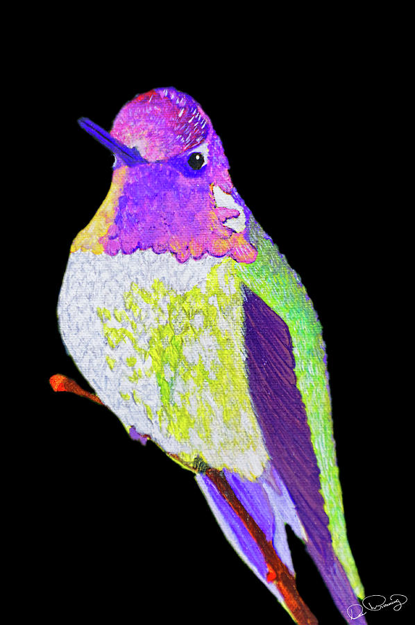 Anna's Hummingbird II by Dee Browning