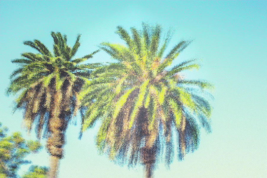 Palm Tree Photograph - Art Deco Palms by Joseph S Giacalone
