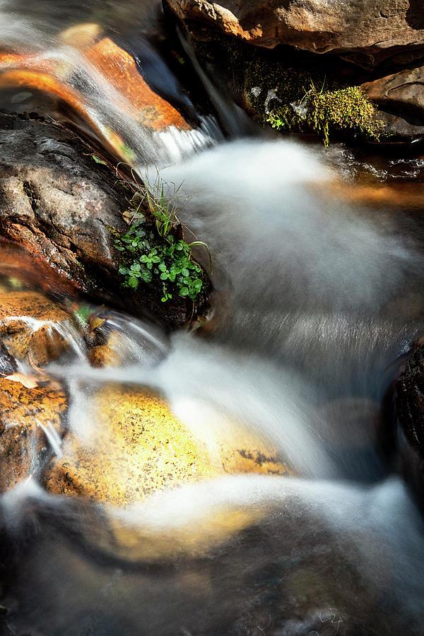 As The Water Flows  by Saija Lehtonen