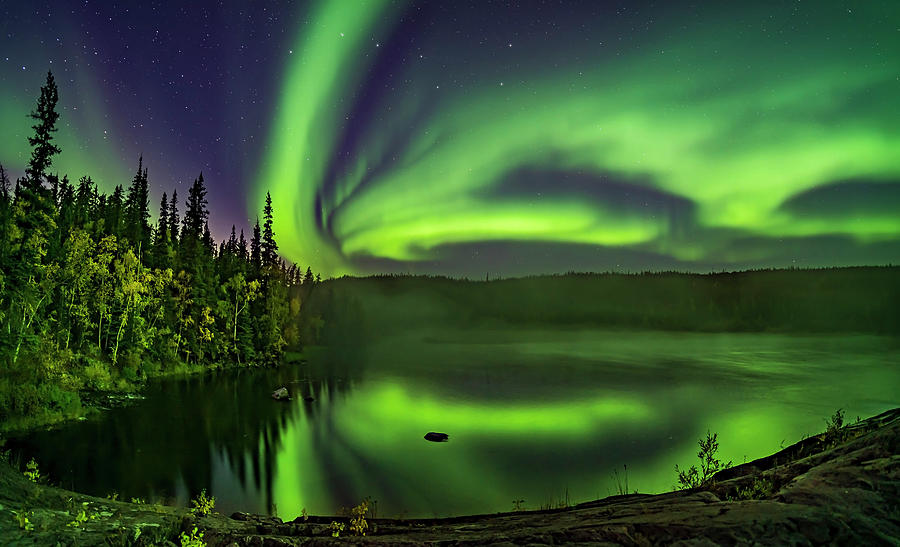 Aurora Over Cameron River With Autumn by Alan Dyer