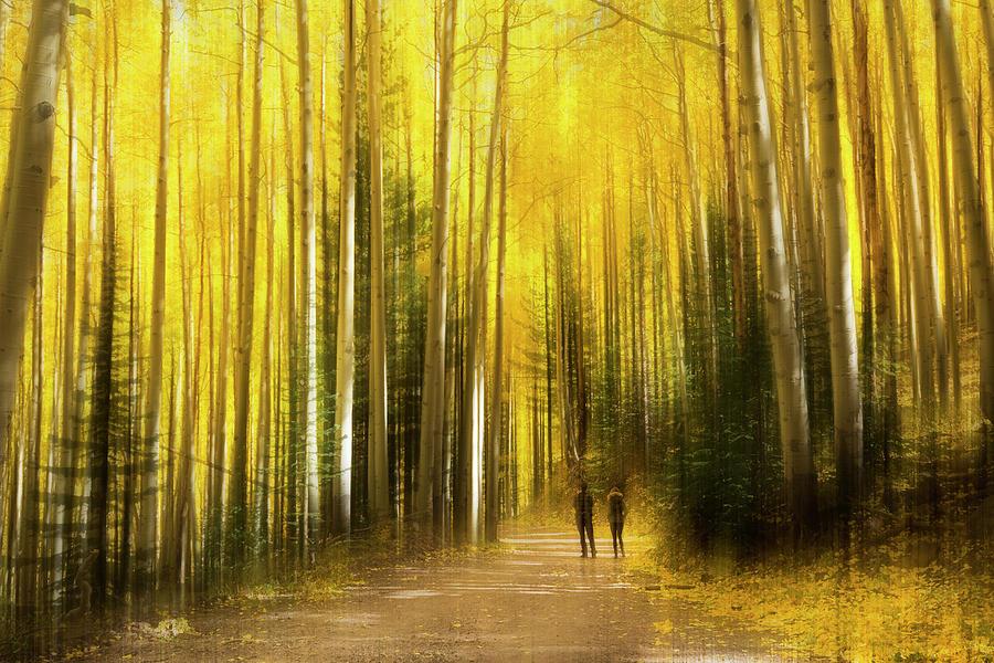 Autumn Dreams by Sue Cullumber