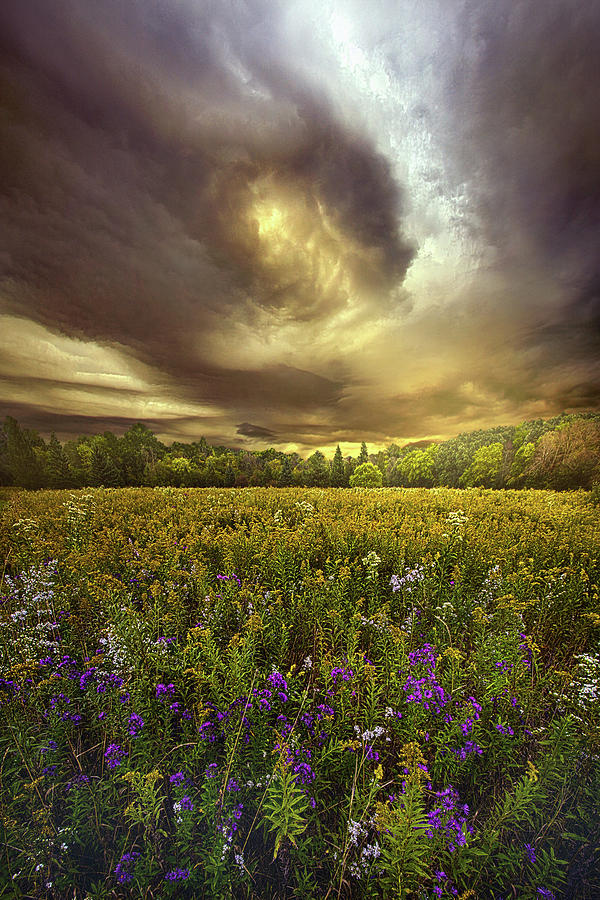 Life Photograph - Autumn Falls 1 by Phil Koch