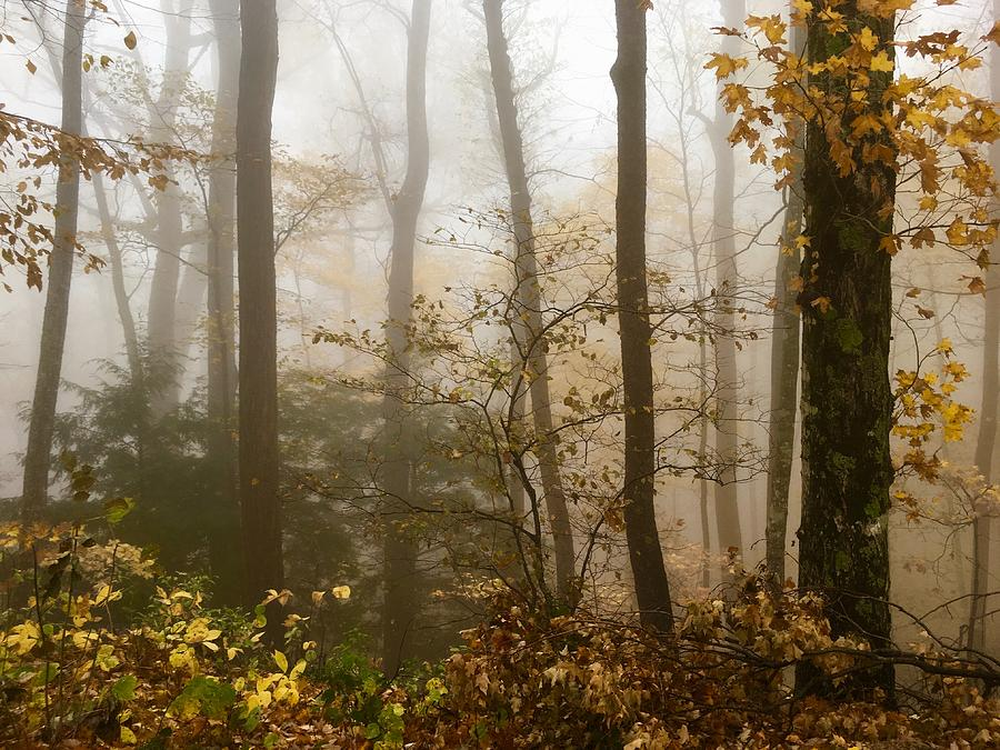 Autumn in the Smokies by Kevin Wheeler