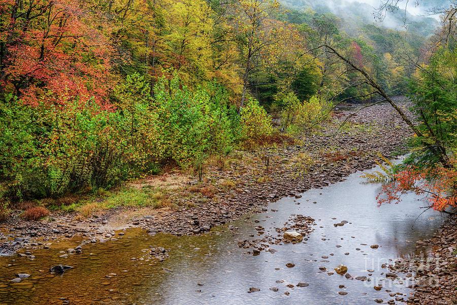 Autumn Rain on Williams River  by Thomas R Fletcher