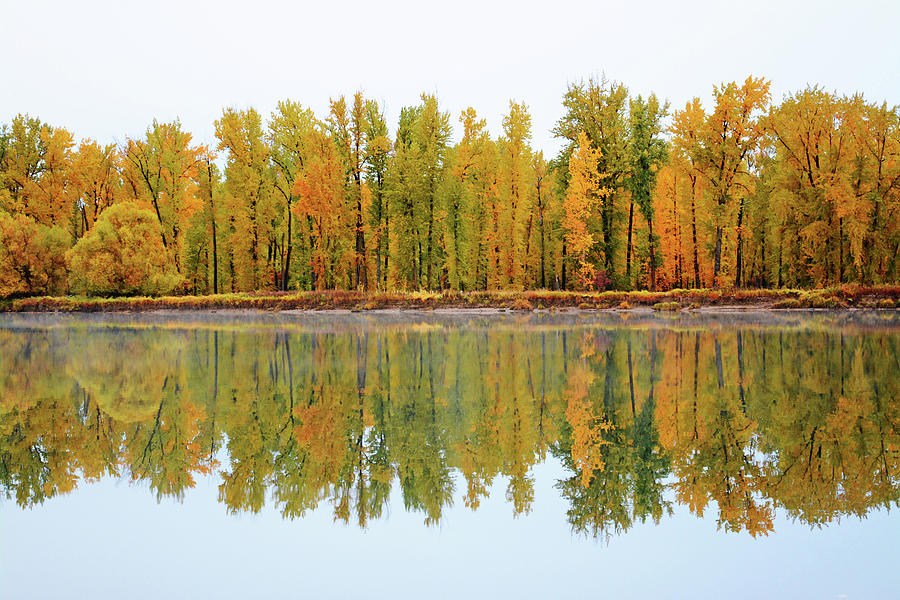 Autumn Reflections by Whispering Peaks Photography