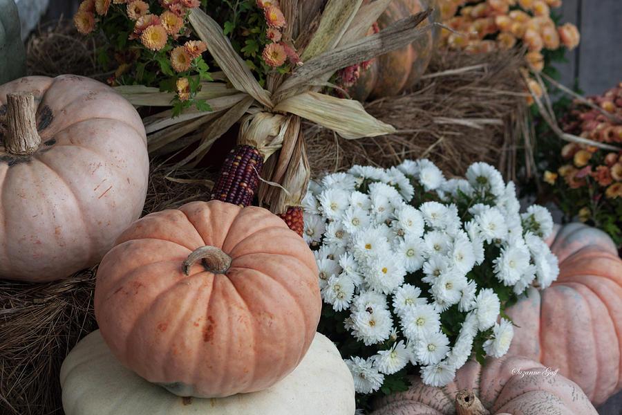 Autumn Still Life II by Suzanne Gaff
